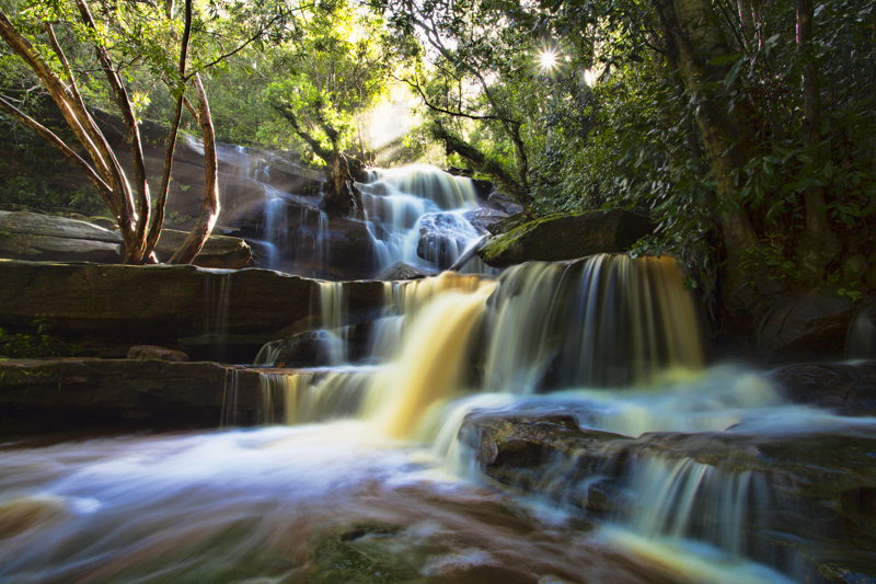 Somersby falls, Central Coast